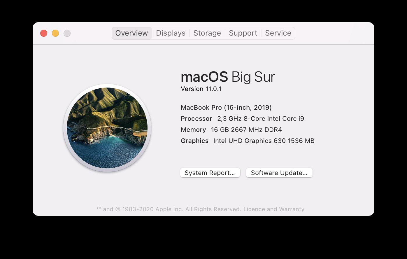Mac info window